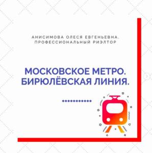 Московское метро. Бирюлёвская линия.